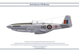 Mustang GB 154 Sqn 1 by WS-Clave