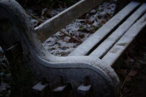 Frosty Bench by Solarmousetrap