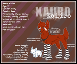Xaiiro Ref - 2007 by OkapiCrazed