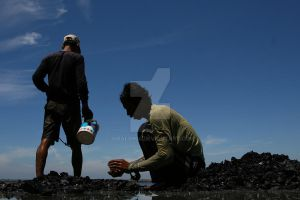 Coal for living by iqbal0904