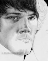 :SPN JARED IN PROGRESS: by Angelstorm-82