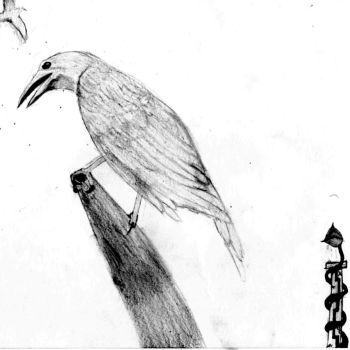 just a crow ._. by eZkiZo