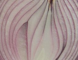Halved Red Candy Onion Closeup by Windthin