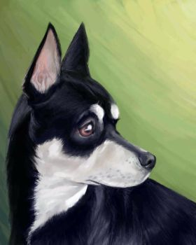 Portrait Of Miko by Kasie
