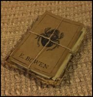 Enoch Bowen's Expedition Journal by JasonMcKittrick