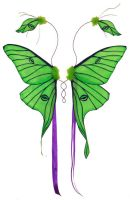 Green Luna Moth Fairy Wings by customfairywings