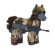 Commission - Canterlot Republic Trooper by ErinPtah