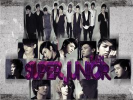 Super Junior By Ale.M by DDLoveEditions