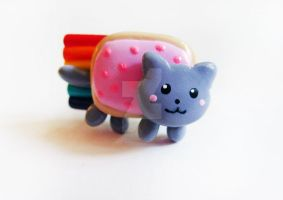 Nyan Cat Ring by mAd-ArIsToCrAt