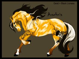 CH Arachnia by Everland-Stables