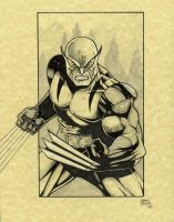 Wolverine first appearance by seanforney