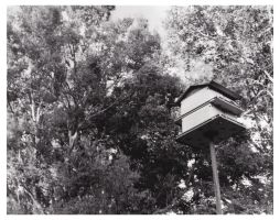 091001birdhouse by PaigeC