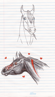 Head Sketches by blackwing-fang