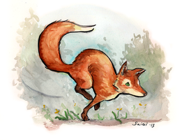 Running Fox by Shailin
