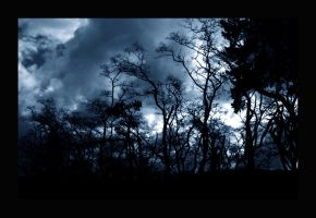 Foreboding by Scubaozgirl
