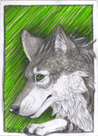 ACEO trade - Cally-Dream by TheKellox