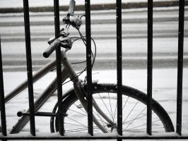 Bike. by asaluiphotography