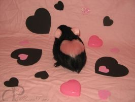 I :heart: Guinea Pigs Plushie - Black + Pink Heart by Morumoto