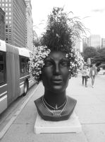 Chia-Head in Chia-cago by simpspin