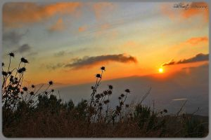 Sunset on the mount by ShlomitMessica