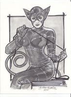 cat woman by mikitot