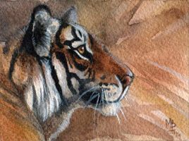 ACEO for kailavmp by wolf-minori