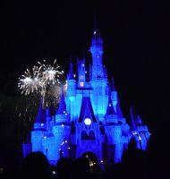 Wishes, 2009 - 29 by CanisCamera