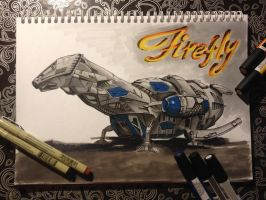 Firefly with markers by lars-sinde