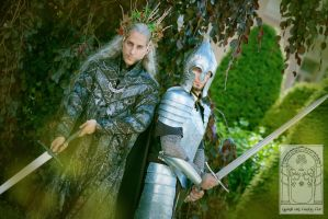 Thranduil and Faramir by geridevil