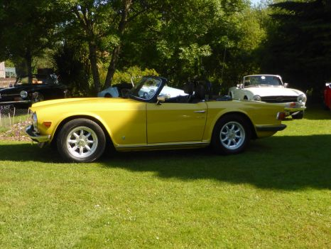 Triumph TR6    Mimosa Yellow by Torre7