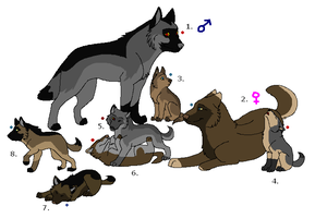 Wolf Adoptables 9: CLOSED by Manic10974