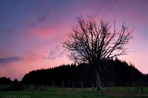 Dusk over the Country by FlorentCourty