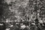 The Wall by dkokdemir