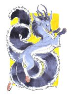 Two tailed by Anisis