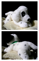 101 Dalmatians Patch Plush by The-Toy-Chest