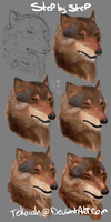 Wolf realism Step by Step by Allixi