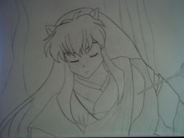 Inuyasha: The Half-Demon by AnimeCouples1992