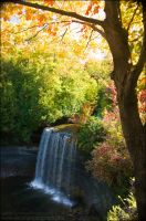 Fall Cascade by Sarah--Lynne