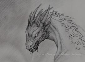 """birth""_of_a_dragon by nocturnalMoTH"