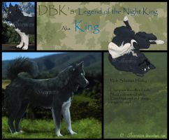 DBK's King by Sharaiza