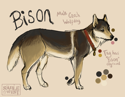 Bison by Sablewest