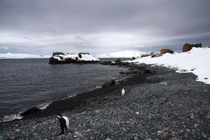 Antarctica by witam