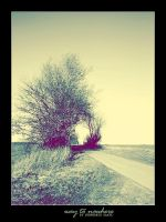 Way to Nowhere by Lexana