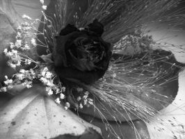 gloomy bouquet by Lucy-Redgrave