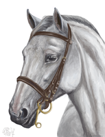 Paint a horse by Winehorse