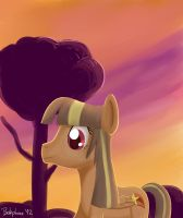 In the sunset by shivanking