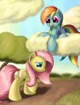 Potential Flying Buddy by Grennadder