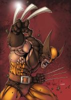 Wolverine: Turner by Nubry
