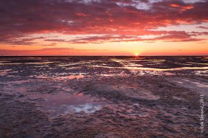 Sunset at Grado Italy. by eriksimonic