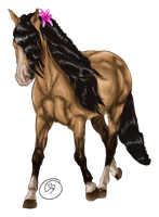 Andalusian mare by Starblas